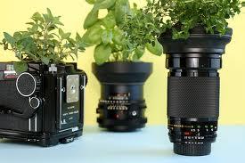 camera_w_herbs